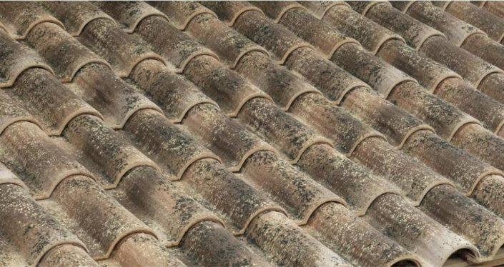 1_roman roof top tiles_6_Damask_eng